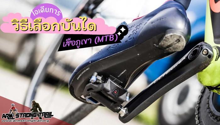 วิธีเลือกบันได เสือภูเขา (MTB) ให้ตรงความต้องการให้มากที่สุด พูดถึงเฉพาะบันไดจักรยานเสือภูเขานั้น มีหลายแบบให้เลือกขึ้นอยู่กับวัตถุประสงค์